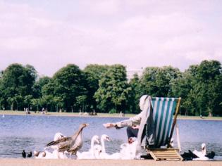 夏・ハイドパーク イギリス