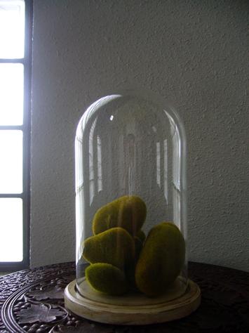 アンティークガラスドーム