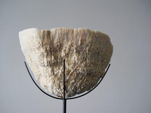 天然珊瑚のオブジェ