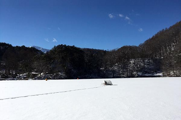 松原湖 ワカサギ釣り