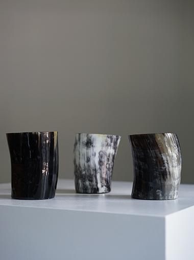 Cow Horn Vase